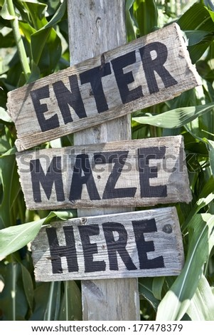 Corn Maze Sign - stock photo