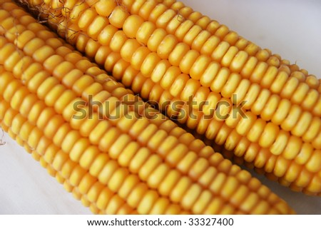 Corn more than a white background