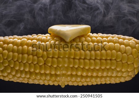 Corn on the Cob - stock photo