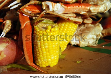 Corn on the cob and crab legs served at a picnic barbecue - stock photo