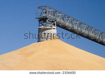 Corn pile - stock photo
