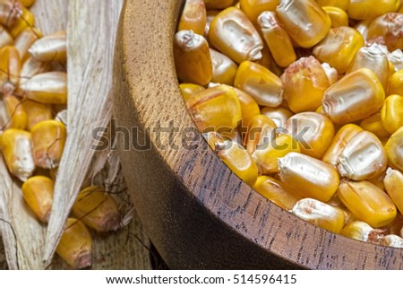 Corn Seeds in Wooden Bowl Close Up. Good Harvest.