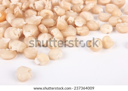 Corn seeds isolated on white - stock photo