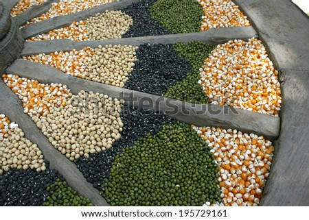 corn seeds, soybeans, sunflower and green beans - stock photo
