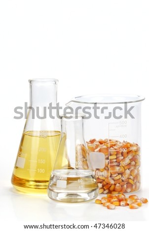 corn seeds with their products--oil and ethanol - stock photo