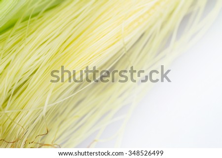 Corn silk close up with selective focus point - stock photo