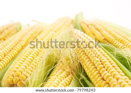 corn with leaves - stock photo