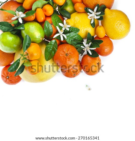Corner border of citrus fruits mixed close up  top view background - stock photo