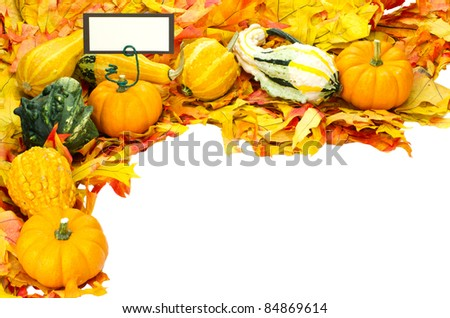 Corner border with fall leaves and decorative gourds and sign or tag or label for your text isolated on white - stock photo