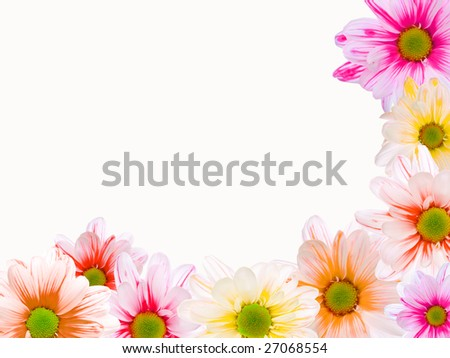 Corner frame made of daisy flowers, over white - stock photo