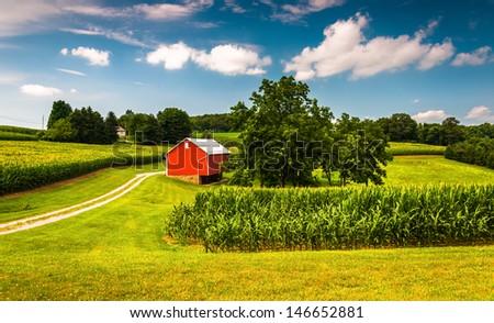 Cornfield and barn on a farm in Southern York County, Pennsylvania. - stock photo