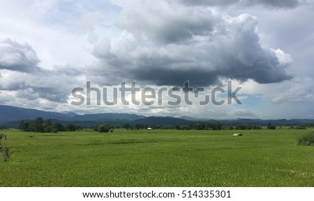 cornfield and mountain with cloudy sky.