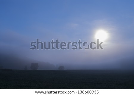 Cornfield in the early morning mist, Stowe, Vermont, USA - stock photo