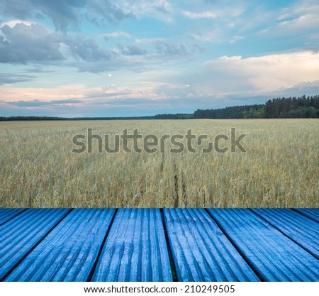 cornfield with wooden floor
