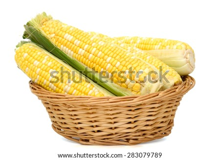 corns in basket isolated on white  - stock photo