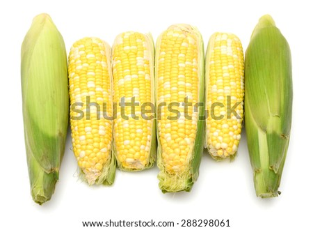corns in row on white background  - stock photo