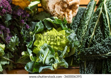 Cornucopia of vegetables from the brassicaceae family: purple sprouting broccoli, swede, black cabbage, with focus on Romanesco caulliflower with its beautiful fractal shapes. - stock photo