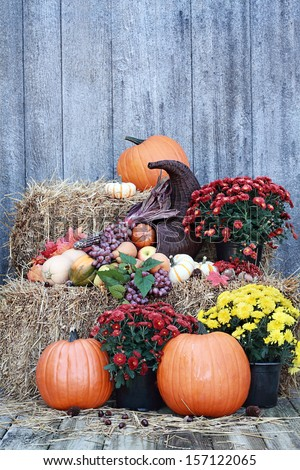 Cornucopia or Horn of Plenty spilling out fruits and vegetables with Pumpkins and Chrysanthemums on a bale of straw against a rustic background. - stock photo