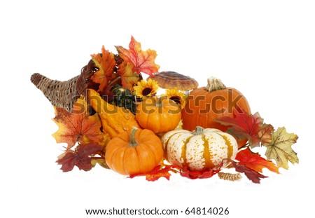 Cornucopia Thanksgiving Decoration - stock photo