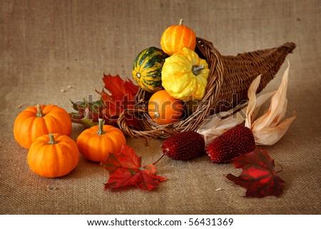 Cornucopia with pumpkins on brown background - stock photo