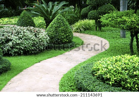 Corridor of the park with trees in the background. - stock photo