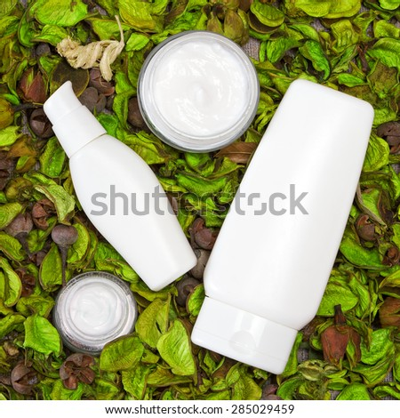 Cosmetic skin care products surrounded by dry green leaves. Open glass jars of cream with other beauty products. Organic cosmetics for women. Top view - stock photo