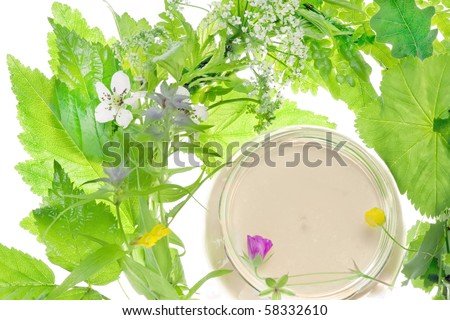 cosmetics and herb - stock photo