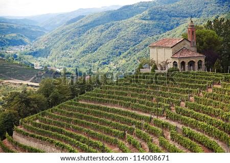 Cossano Belbo (Piedmont, Italy): landscape of Langhe. On the right the Church of San Bovo. - stock photo
