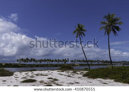 Costa do Sauipe the coastal landscape in Bahia Brazil - stock photo