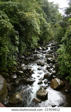Costa Rica cloud forest and river - stock photo