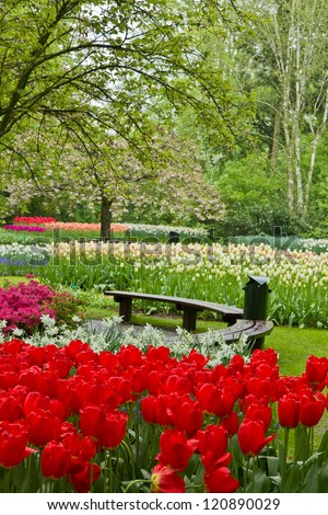 Cosy bench among spring  flowers and blossom in dutch garden 'Keukenhof', Holland - stock photo