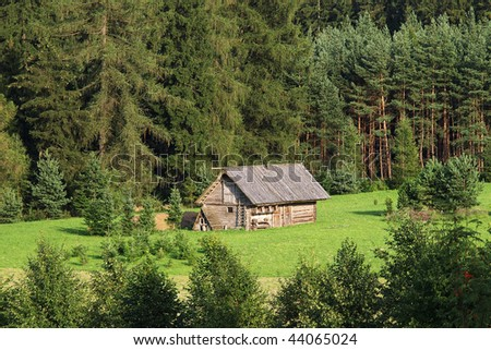 cottage between forestry