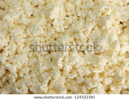 cottage cheese, close up - stock photo