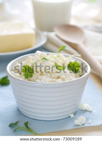 cottage cheese in bowl with other dairy product on background