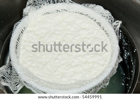 Cottage cheese is a cheese curd product with a mild flavor. It is drained, but not pressed so some whey remains and the individual curds remain loose. - stock photo