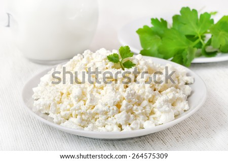 Cottage cheese on white plate, close up view - stock photo
