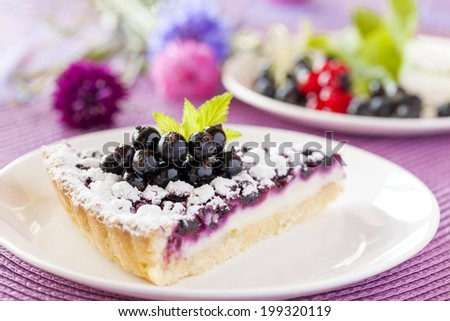 Cottage cheese tart with black, red currant and icing on the purple background. Low depth of focus. - stock photo