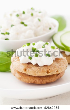 Cottage Cheese with Cucumber on Cracker - stock photo