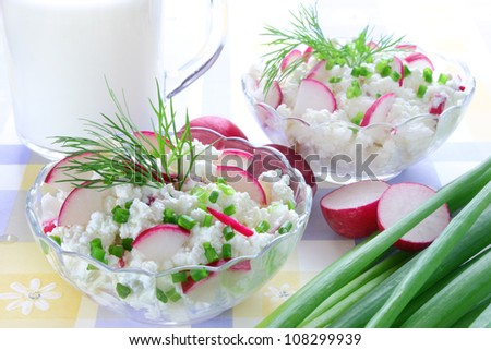 Cottage cheese with radish,chives and dill - stock photo