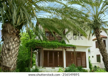 Cottage for tourists and palm trees - stock photo