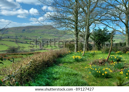 Cottage garden at White Castle, Monmouthshire, Wales - stock photo