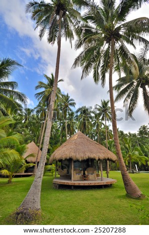 Cottage in Coconut Palm Garden - stock photo