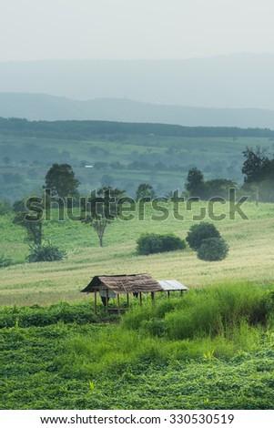 Cottage in the mountain,Khonkaen,Thailand. - stock photo