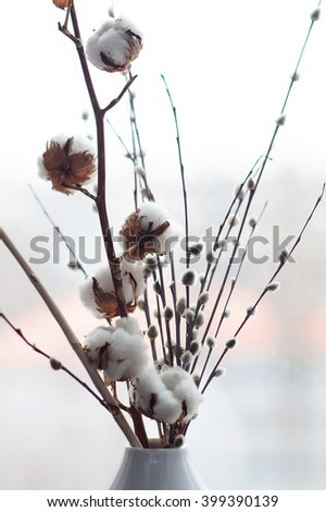 Cotton flower and pusy willows close up in white vase. - stock photo