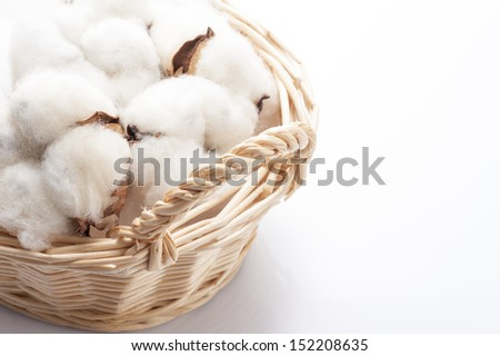 Cotton that went into the basket - stock photo