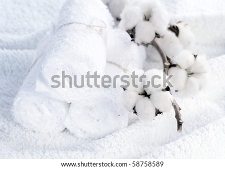 Cotton White Towels with Cotton Plant - stock photo