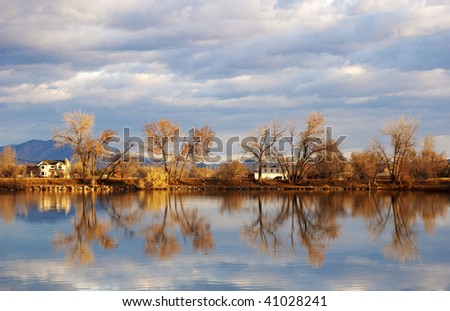 Cottonwood trees lean in different directions by a lake with reflections