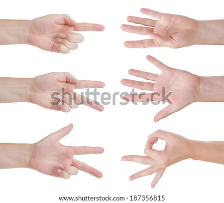 Counting hands isolated on white - stock photo