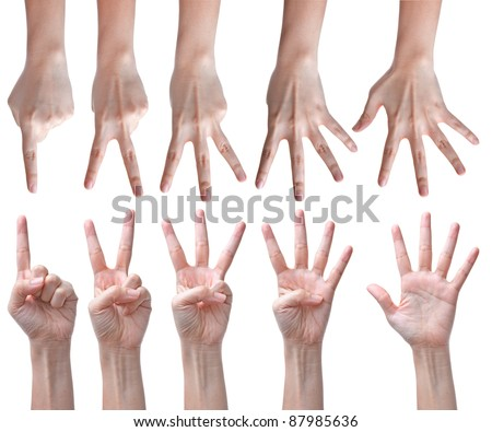 Counting hands isolated on white