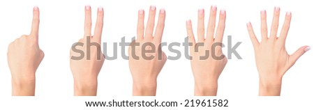 Counting woman hands isolated on white background - stock photo